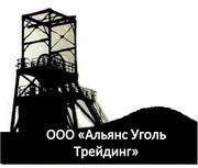 Уголь каменный фасованный