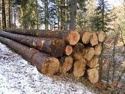 круглый лес (пиловочник)