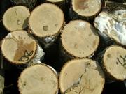 куплю лес кругляк в кемерово
