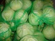 Оптом картофель,  лук,  морковь,  капуста по России