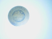 продау монету. продаю в городе березовском,  кемеровской области.......