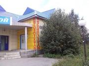 Продажа коммерческой недвижимости в Гурьевске.